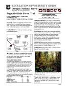 Bogachiel Rain Forest Trail