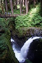 Lake Crescent waterfall