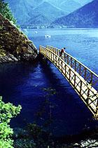 Lake Crescent pic