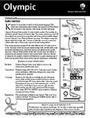 Kalaloch Area