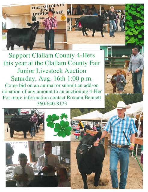 Clallam County 4-Hers