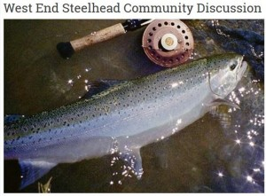 West End Steelhead Community Discussion @ Rainforest Arts Center | Forks | Washington | United States