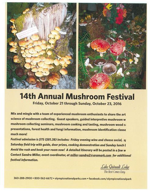 5d1bf02c423add 14th-Annual-Mushroom-Festival.jpg