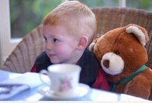 Franklin & Theodore's Teddy Bear Tea Party @ Lake Crescent Lodge