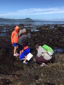 Tide Pools Exploration @ Slip Point Lighthouse | Clallam Bay | Washington | United States