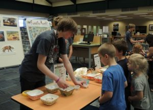 NOLS:  Hands on Children's Museum @ NOLS: The Forks Branch Library | Forks | Washington | United States