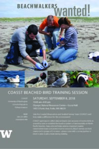 Coastal Observation and Seabird Survey Team (COASST) @ onrc | Forks | Washington | United States