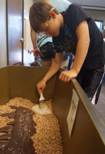 NOLS:  Dino Dig with the Burke Museum @ Clallam Bay Library | Clallam Bay | Washington | United States