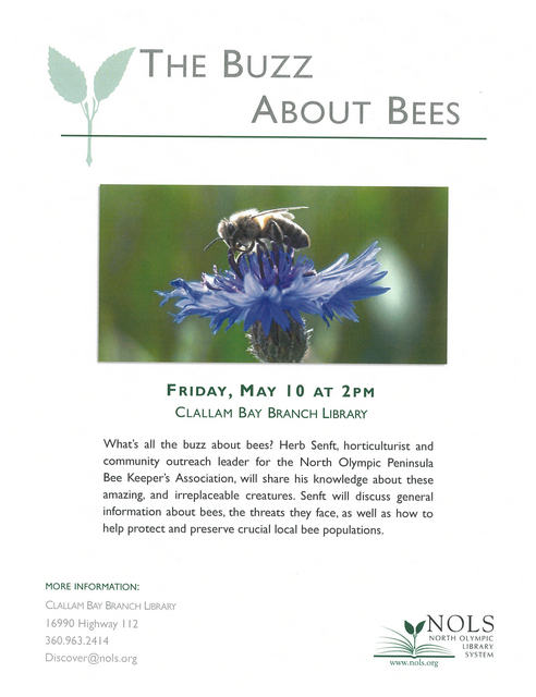 The Buzz About Bees @ Clallam Bay Branch Library | Clallam Bay | Washington | United States