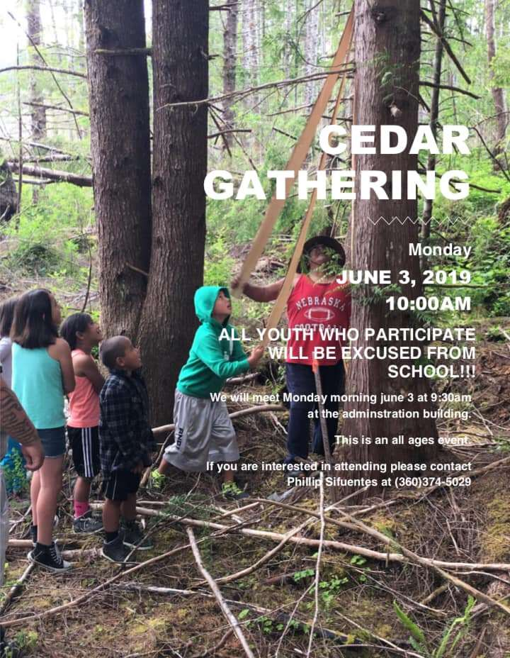 Cedar Gathering @ Hoh Administration Building | Forks | Washington | United States