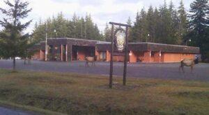 Veterans Drive Through Dinner @ Forks Elk Lodge   Forks   Washington   United States