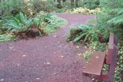 Pioneers\' Path Trail